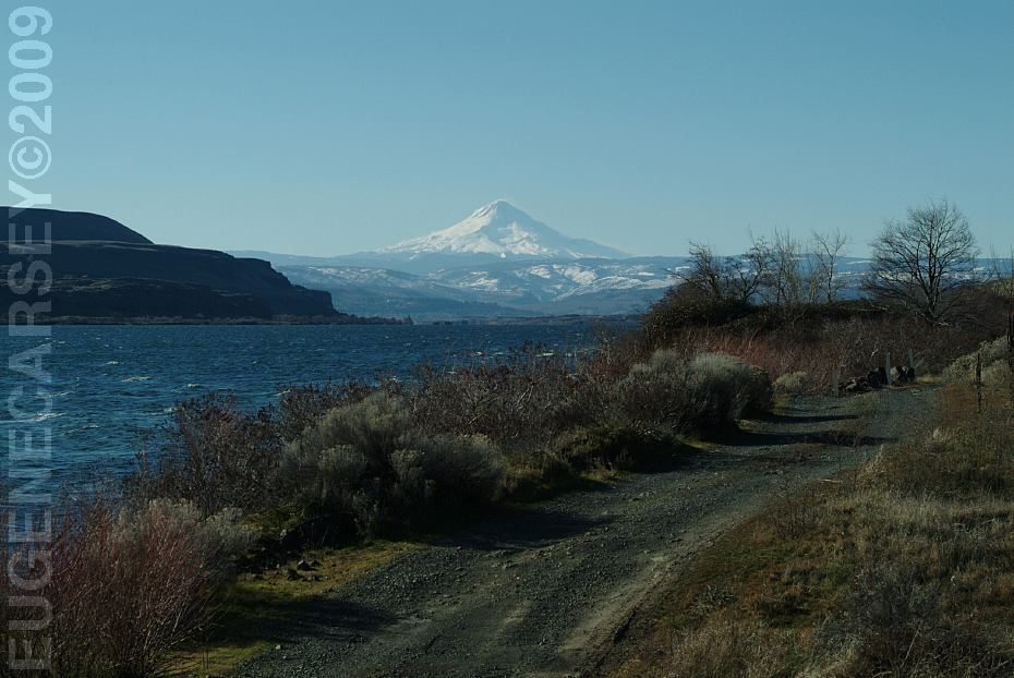 Free campgrounds avery park fishing site in the columbia for Hood river fishing