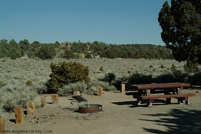 Free Campgrounds - Ancient Bristlecone Pine Forest in Inyo National