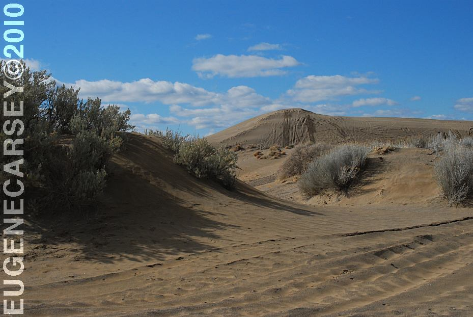 Free Campgrounds - Christmas Valley Sand Dunes Junipers Camp