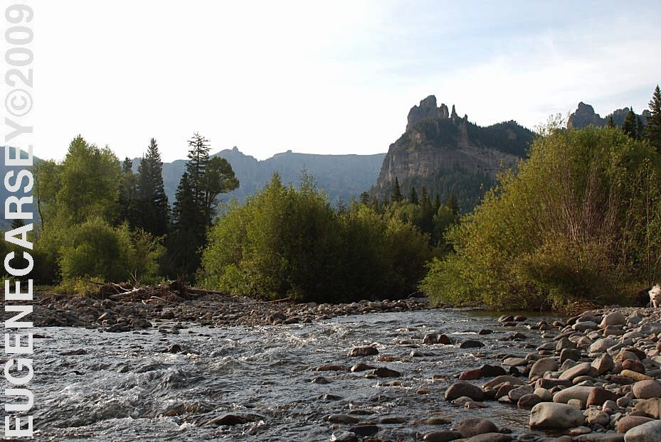 Free campgrounds owl creek pass in uncompahgre national for Owl creek