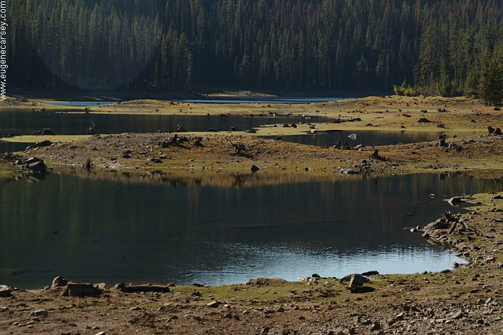 Free campgrounds twin lakes campground in wallowa for Fish lake camping